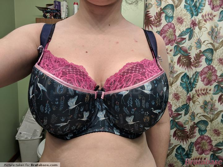 I was convinced the cups were cut short or something, and while I know a BM is supposed to provide extra coverage, I honestly think that extra panel of stretchy lace benefits the bra greatly. Maybe Comexim should try something similar, especially in the higher cup ranges? | 65O - Comexim » Ardea Half Cup