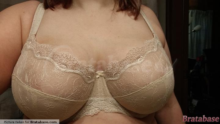 Doesn't look too bad from the front. | 36FF - Panache » Elsa Balconnet Bra (6691)