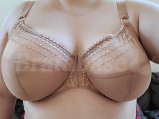 40H - Elomi » Matilda Plunge Bra (8900) Wearing bra - Front shot