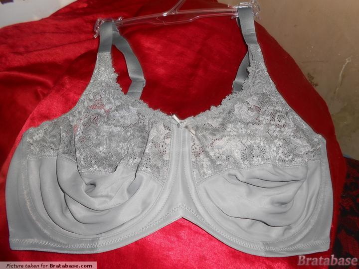 | 40DD - Lilyette » Comfort Lace Minimizer (428)