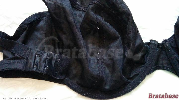 pilling & hook condition | 34H - Panache » Tango Ii Plunge Bra (3256)