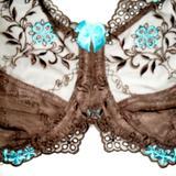 Chocolate/Aqua 28H Front Details