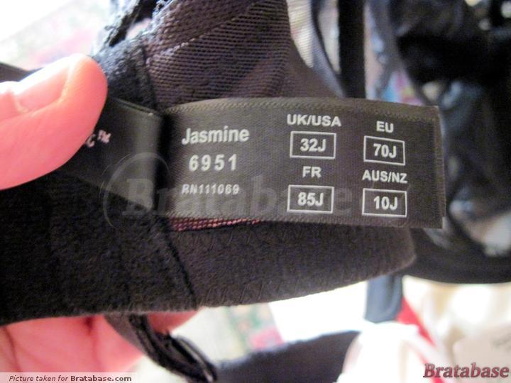 | 32J - Panache » Jasmine (6951)