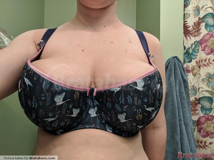 Wearing two cookies on my right side to try and fill the cup.. somewhere? I actually placed them closest to the underwire by the gore. It gave me the best fit, but it was still questionable. | 65O - Comexim » Ardea Half Cup
