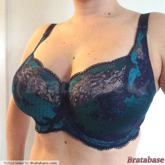 Such a gorgeous color! | 32GG - Panache » Clara Full Cup Bra (7255)
