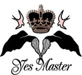 Logo for Yes Master