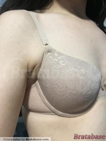 Isn't quite wide enough for me. Maybe just migrated tissue after years of wearing the wrong bra size? | 32C - Natori » Sheer Jacquard Full Fit Contour Underwire Bra (1