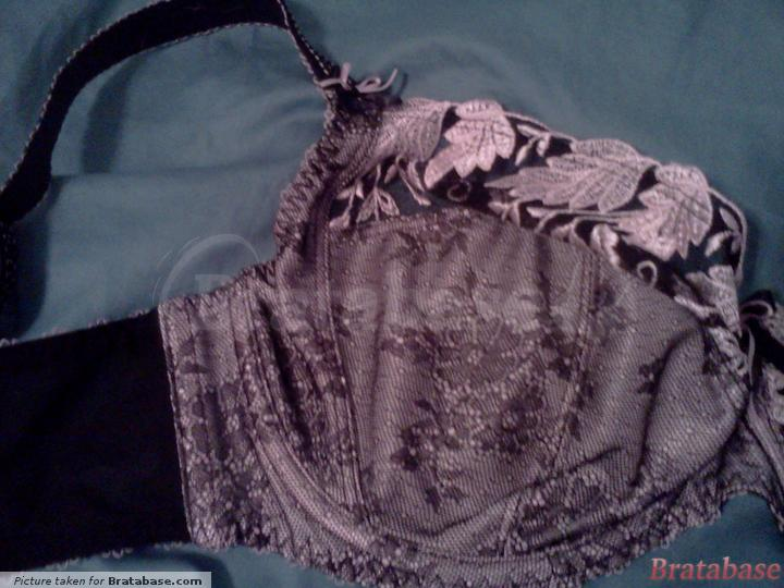 cup lace detail | 32FF - Fantasie  » Savannah Underwire Side Support (2152)